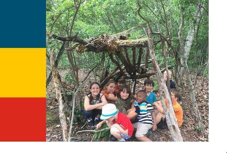 tree-fort